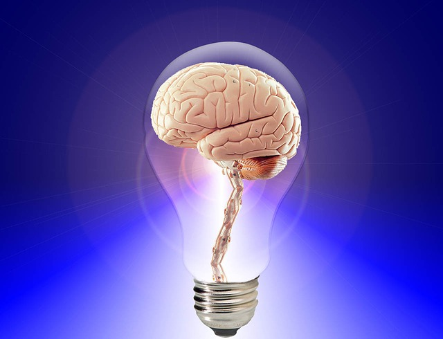 גם המוח הוא שריר, הפעילו את שרירי הגוף…ותזכרו טוב יותר